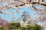 Интегрированный урок «Япония. Японские трёхстишия»