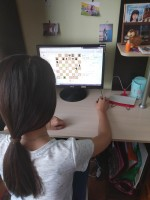 Шахматный турнир в режиме онлайн.